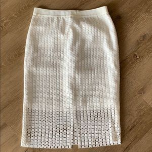 Ann Taylor Ivory Pencil Skirt with Embroidery